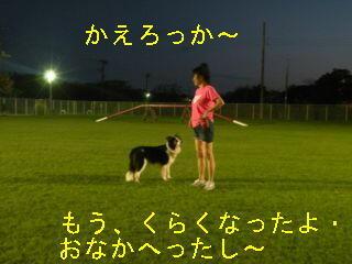 くらくなったDSCN5648_Resize.JPG