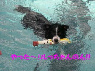 やったー編集DSCN5797_Resize.JPG