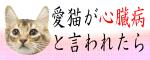 ネコ・心臓病nekobanner2-03.png