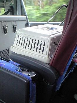 バスの中CA3A0673001.jpg