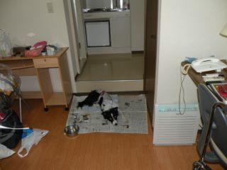 ホテルの部屋②DSCN5584_Resize.JPG