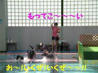 モッテコイ編集DSCN5768_Resize.JPG