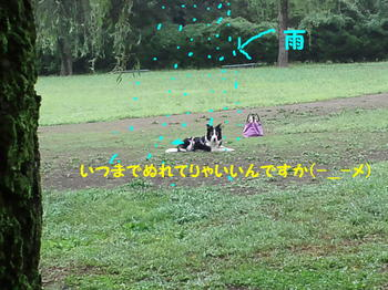 休止練習編集DSC_5798.JPG