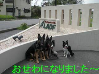 全員編集DSCN5737_Resize.JPG