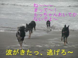 海・まって~編集DSCN5685_Resize.JPG